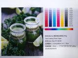Papier 230GSM de photo d'enduit de moulage approprié à l'impression à l'encre de teinture