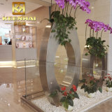 Potten van de Installatie van het Roestvrij staal van Guangdong de Decoratieve voor Ontwerp