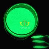 Incandescenza di colore verde nel pigmento giallo verde di incandescenza del pigmento della polvere di luminosità scura di Hight