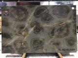 Черепаха иллюзию Quartzite полированной плитки&слоев REST&место на кухонном столе