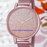 Señora Quartz Wist Watch, servicio del OEM de los relojes de señoras (WY-17025B) de la aleación del acoplamiento