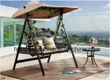 /Rattan esterno/presidenza dell'oscillazione mobilia del giardino/patio/hotel & Tabella di legno di plastica del lato ha impostato (HS 3008SC& HS 6050ET)