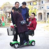 Rotella del commercio all'ingrosso 3 del fornitore dell'OEM che piega il motorino elettrico di mobilità