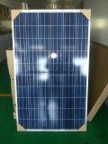 300 W haute efficacité Poly Panneaux solaires PV choix intelligent pour système d'alimentation solaire