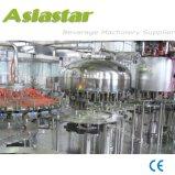 L'eau minérale entièrement automatique des machines de traitement de ligne de remplissage