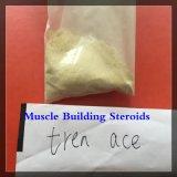 Finaplix 근육 빌딩 CAS 10161-34-9를 위한 노란 분말 Trenbolone 아세테이트