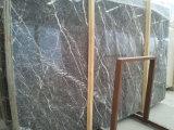 Tuile de marbre grise et brame de coup blanc de marbre gris foncé de veine