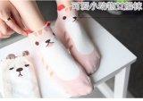 De Sokken van de Reeks van de Koreaanse Vrouwen van de Dieren van de Katten van het Puppy van het Beeldverhaal