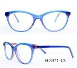 De kleurrijke Handwork Vrije Steekproeven Eyewear van de Hoogste Kwaliteit