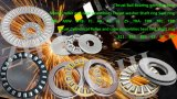Professional Fabricant de roulement à aiguilles (CHF/KR/NUKR/CCFH/NATR/NUTR)