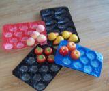 Lebensmittelindustrie, die Großhandelswegwerfplastiktellersegment mit Teilern verpackt