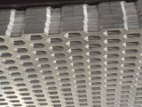 穴があいた金属の網のパンチ穴の網