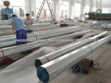 Китайский стандартных DIP оцинкованных электрический восьмиугольной стали полюс
