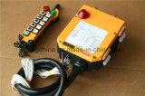 À télécommande sans fil de grue de F24-10s Inductrial