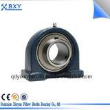 Serie der Kissen-Block-Peilung-UCP, China-Hersteller