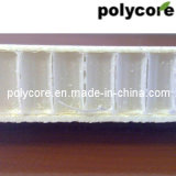 Panneau d'Honeycomb PP Honeycomb