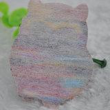 Contrassegni del tessuto di figura degli uccelli di taglio del laser per la decorazione sacchetti/dell'indumento
