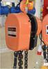 DHSは手動チェーン起重機、プーリーブロックをタイプする