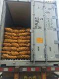 Frische Kartoffel/goldener Lieferant