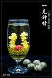 Зеленый зацветая стандарт EU чая (чая цветка, чая искусствоа)