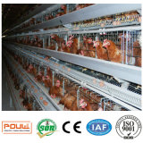 養鶏場装置か鶏のケージシステム