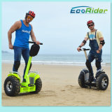 2016 Selling 최신 Green Power Electric Car Powerful Brush Motor 2000W Two Wheels Standing Smart Balance Hoverboard 시 Road Scooter