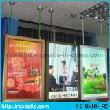 Publicidade de frente duplo Slim Light Box Display