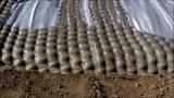 Geotextile die van Polyproplen Geotube voor de Bank van de Rivier ontwateren
