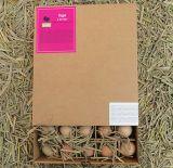 Rectángulo de papel estriado impresión de encargo del embalaje de huevos