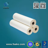 BOPP Thermal Laminating Film per Printing Material con 24mic
