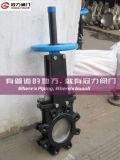 Lug Type de Vanne guillotine (Z73)