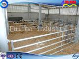 مواش مواش [هدلوك] /Livestock سياج/تغذية لونية