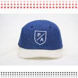 2016 nuovo cappello di Snapback del comitato di stile 6