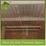 dekorative Aluminiumleitblech-Decke des streifen-40W*100h für Holl Methode
