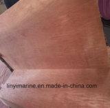 Faisceau de bois dur de contre-plaqué de plancher de conteneur d'Apitong de colle de WBP