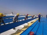 Strato d'acciaio del tetto per il gruppo di lavoro della struttura d'acciaio dell'ampia luce (ZY227)
