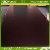 Dynea película cara de madera contrachapada de color marrón (W15025)