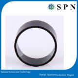 모터를 위한 플라스틱 보세품 네오디뮴 Magnet/PPS 자석 반지