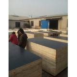 Negro de carpintería para la construcción