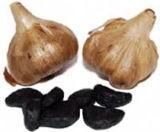 Estratto nero sano dell'aglio per il condimento