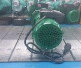 가정 사용을%s 제트기 100A 제트기 수도 펌프 Self-Priming 펌프
