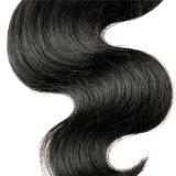 malaysischer verworrener lockiger Jungfrau-Haar-Extensions-Menschenhaar-Webartmalaysischer Afro-verworrenes lockiges Haar der Jungfrau-7A des Haar-4bundles malaysischer