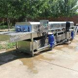 La machine à laver de panier d'oeufs/machine à laver végétale de panier de rotation