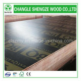 Logo impresso 4X8 Feet Black Film Faced Plywood