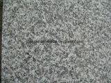 De Steen van de Stappen & van de Loopvlakken van de Trede van het Graniet van het Bouwmateriaal van de Steengroeve van het graniet G623