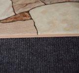 Tegel 200X300 van de Muur van de Keuken van Inkjet van de Verkoop van Foshan de Hoogste Ceramische
