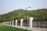 Clôture en acier galvanisée industrielle résidentielle classique personnalisée