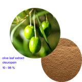 Oleuropeina verde oliva dell'estratto 10%-98% del foglio
