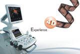 Bewegliches Bild-Ultraschall-System der Karren-4D Doppler fötales