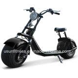 セリウムを持つHarley Tricycle Scooter安い電気都市バイクの王子